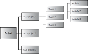 Diagram 1: Project planning schematic
