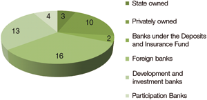 Chart 3: Banks operating in Turkey