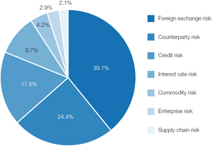 Chart 1: Upon which area of risk management has your treasury department MOST focused on over the past 6-12 months?