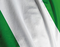 Close-up of Nigerian flag